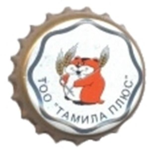 ТАМИЛА ПЛЮС