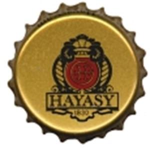 Hayasy