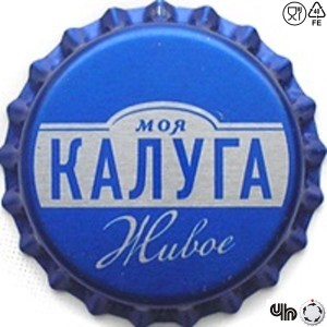 Моя Калуга